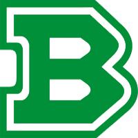 Logo Pall. Treviso