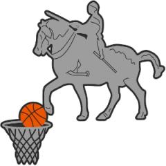 Logo Pall. Gattamelata Padova