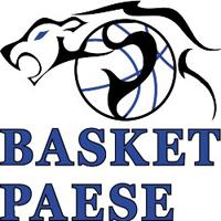 Logo C.O. Basket 2000 Paese