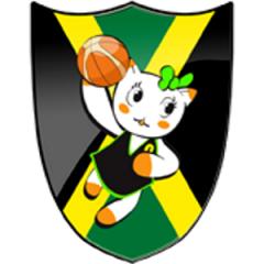 Logo Basket Spresiano