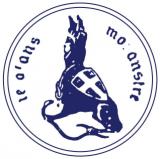 Logo Societ&agrave A.S. Dil. Ginnastica Torino