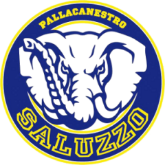 Logo Societ&agrave A. Dil. Pall. Aba Saluzzo