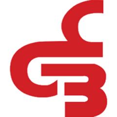 Logo Basket Boffalora