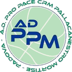 Pro Pace CRM Mortise