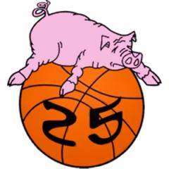 Logo Basket Senna