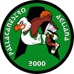 Logo Pall. Agliana