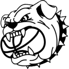 Logo Basket Bareggio