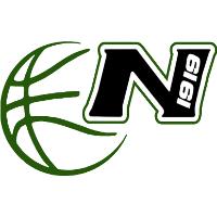 Logo Nervianese