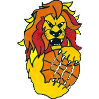Logo Basket Bardolino