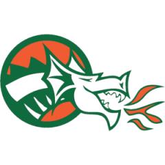 Logo Synergy Valdarno