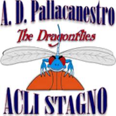 Logo Pall. Stagno