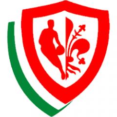 Logo Pino Dragons Firenze