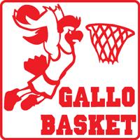 Logo G.S. Gallo