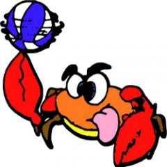 Logo Pall. Femminile Viareggio