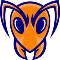 Logo Ichnos Basket Nuoro