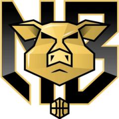 Logo Nubilaria Basket
