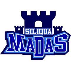 Logo Basket Siliqua