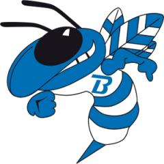 Logo Società A. Dil. Brixia Basket Brescia