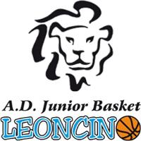 Logo Junior Basket Leoncino