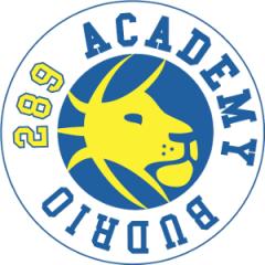 Logo Società Budrio 289 Academy