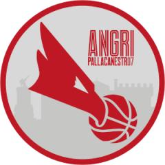 Logo Angri Pallacanestro