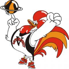 Logo Vico Basket