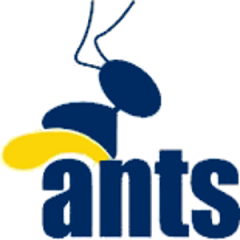 Logo Basket Club Ants