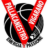 Logo Pall2008 Vigarano