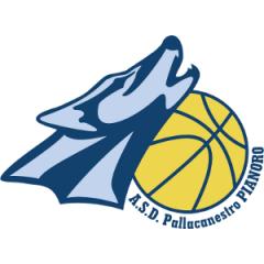 Logo Pallacanestro Pianoro