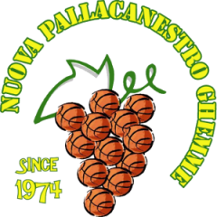 Logo Societ&agrave A.S.D. Nuova Pallacanestro Ghemme