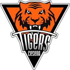 Logo Societ&agrave A.S.D Tigers Basket 2014 Cesena