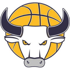 Logo Auxilium Torino