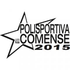 Logo Pol.2015 Comense