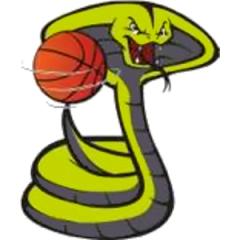 Berica Basket School