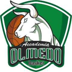 Logo GSD Olmedo