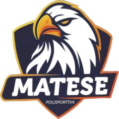 Logo Polisportiva Piedimonte Matese S.S.D.
