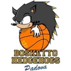 Hedgehogs Padova
