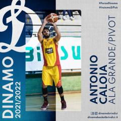 Antonio Caloia é il primo colpo di mercato della Dinamo Basket Brindisi