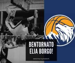 Elia Borgo è il primo tassello per la stagione 2019/20. Alberto Mabilia primo addio