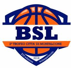 Logo XVI° Summer Basketball League