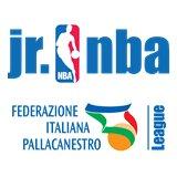 Logo Jr NBA FIP League 2020