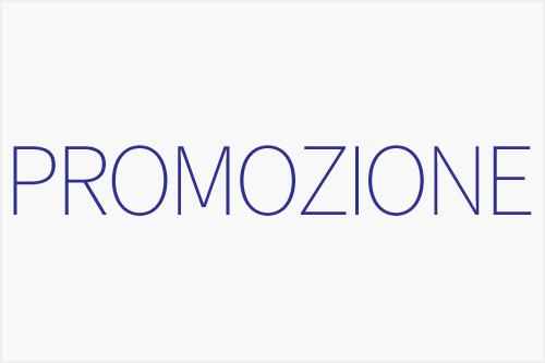 Logo Promo RE